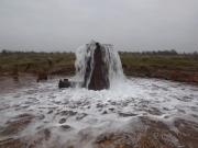 Царицынский источник расположен в юго-западной части Старой Руссы. Источник выведен в результате бурения в 1833 году.